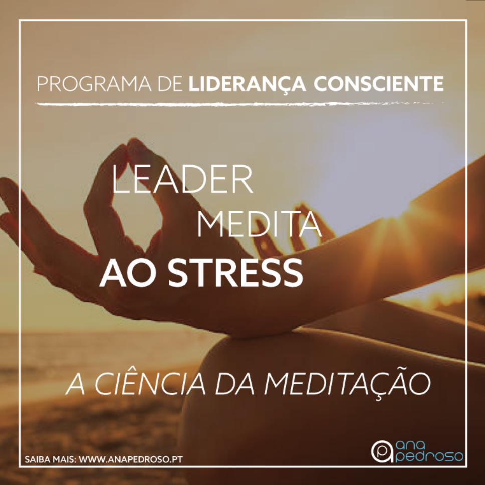 Leader Medita dia 8