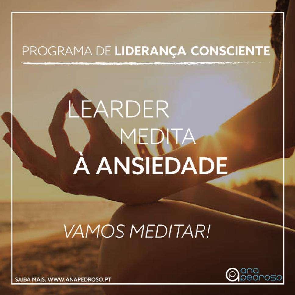 Leader Medita - Curso Ana Pedroso dia 2 - 3