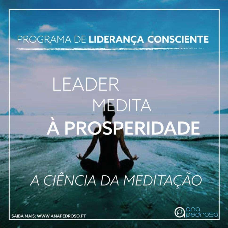Leader Medita - Curso Ana Pedroso dia 6 -2