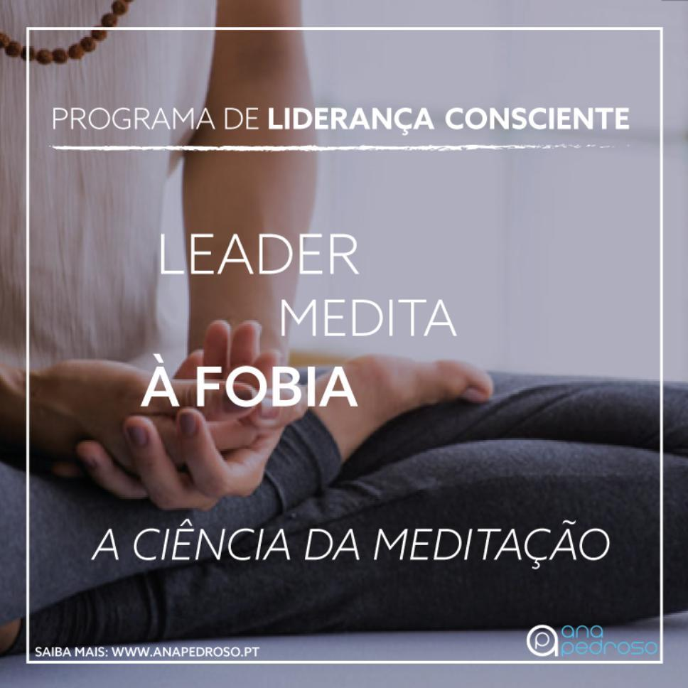 Leader Medita - Curso Ana Pedroso dia 7 -2