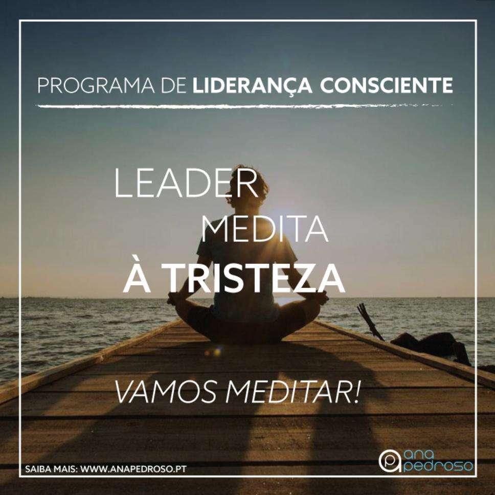 Tristeza Leader Medita - Curso Ana Pedroso dia 5 -3