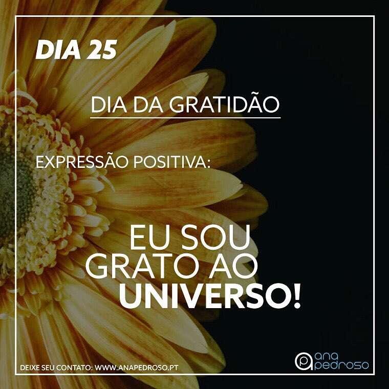 #25 Dia | DIA DA GRATIDÃO!